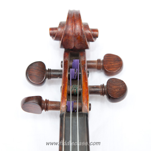 A fiddle scroll and neck, showing the strings wound round the pegs