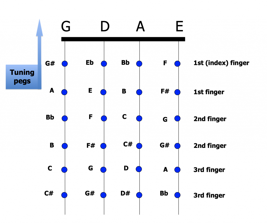 All the semitone notes marked on the strings of a fiddle
